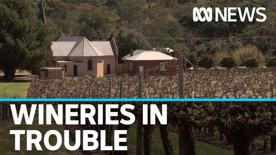 As you open that bottle of wine, spare a thought for where it's made | ABC News