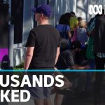 Unemployment rises to 5.2 per cent in March but full impact of coronavirus yet to show | ABC News