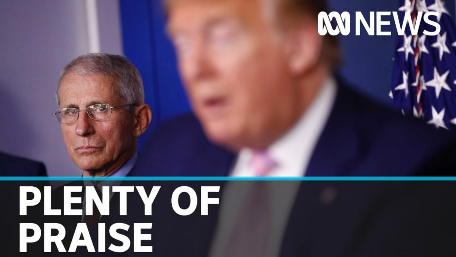 Donald Trump will not fire Dr Anthony Fauci over US coronavirus response comments | ABC News