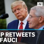 Coronavirus: Trump retweets call for health adviser Anthony Fauci to be sacked | ABC News