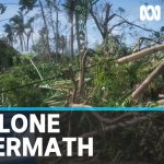 Supplies arrive in Vanuatu amid growing concern over COVID-19 | ABC News
