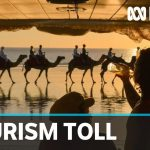 Ongoing travel bans taking toll on Top End tourism | ABC News