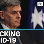 Chief Medical Officer fronts Senate hearing on Australia's handling of coronavirus | ABC News
