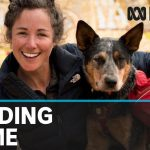 Coronavirus cuts short Australian adventurer Lucy Barnard's walking record attempt | ABC News