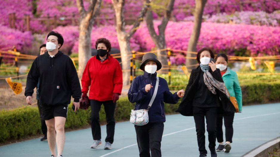 S Korea reports no new domestic coronavirus cases: Live updates | News