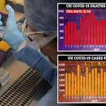 UK coronavirus death toll rises to 18,100 as 763 more die including 26-year-old die – The Sun