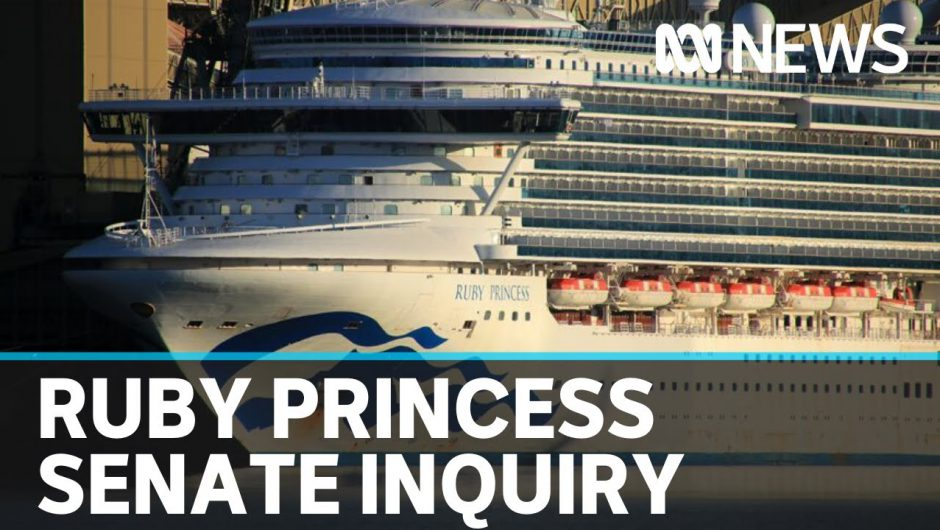 Ruby Princess inquiry: Senate Select Committee on COVID-19