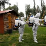 Coronavirus sparked 'tsunami of hate, xenophobia': Live updates | News