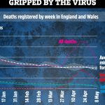 True UK coronavirus death toll is over 44,000 – with almost 12,000 in care homes – The Sun