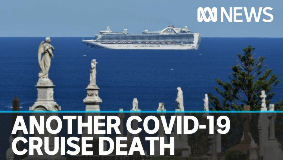 22nd Ruby Princess passenger dies from COVID-19 as pubs seek loosening of restrictions | ABC News