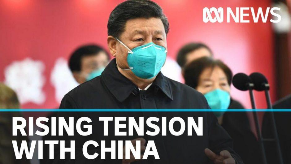 Chinese Govt official slams Australia's push for investigation into coronavirus outbreak   ABC News
