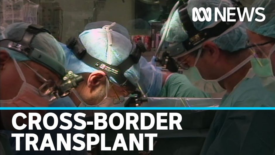 Coronavirus restrictions allow cross-border kidney transplant to avoid organ waste | ABC News