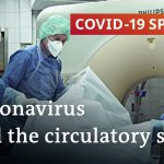 Autopsies reveal: Coronavirus is more than a lung infection | COVID-19 Special