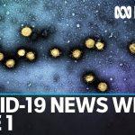 Coronavirus update: The latest COVID-19 news for Monday June 1 | ABC News