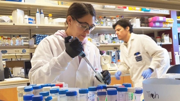 Canadian-made COVID-19 vaccine ready to start human trials soon