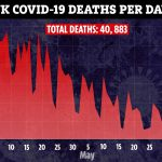 UK coronavirus death toll rises to 40,883 after 286 more people die – but the true total is much higher – The Sun