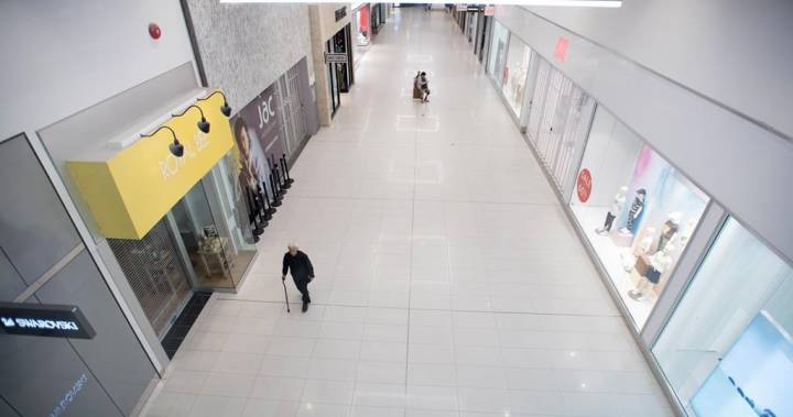 The New Reality: Future of shopping malls in jeopardy as COVID-19 pandemic pushes shoppers online – National