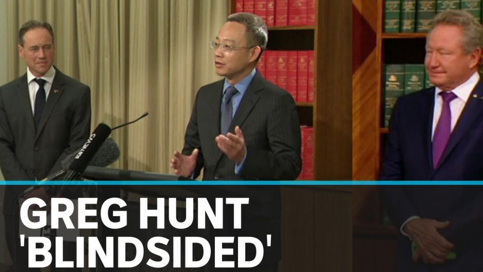 Health Minister blindsided as Chinese consul-general crashes COVID-19 press conference    ABC News