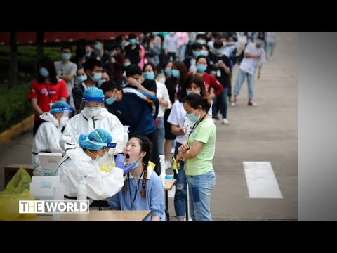 World Health Assembly agrees on independent review into handling of coronavirus pandemic | The World