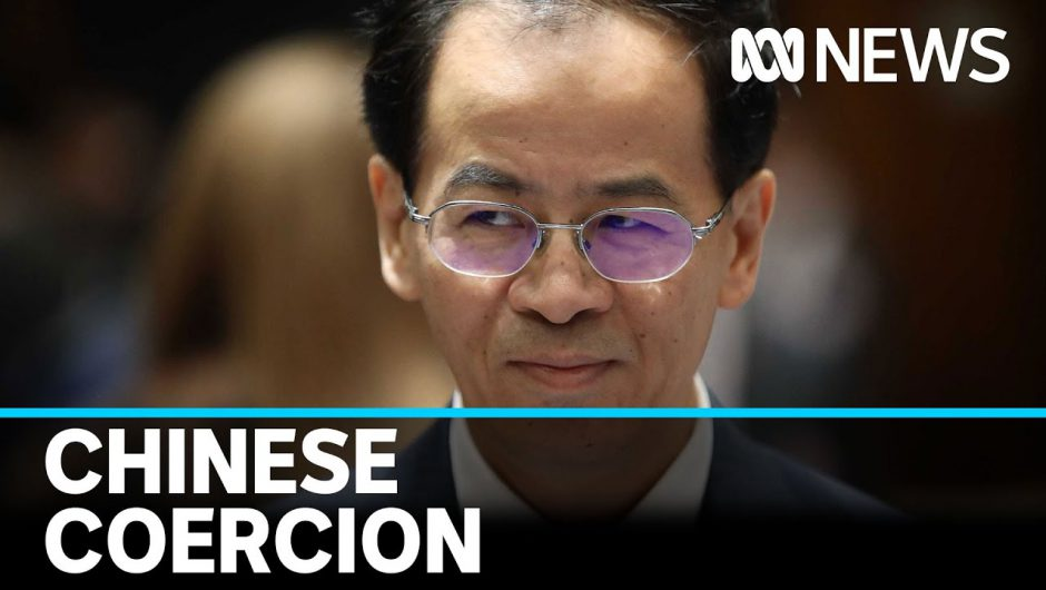 China ramps up campaign against international COVID-19 inquiry | ABC News