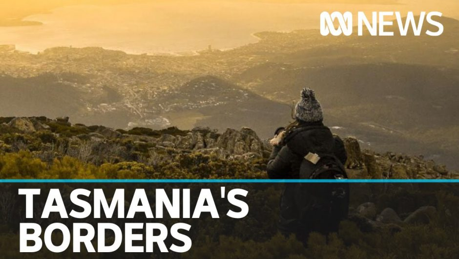 Pressure is mounting to reopen Tasmania's borders to other coronavirus-free states | ABC News