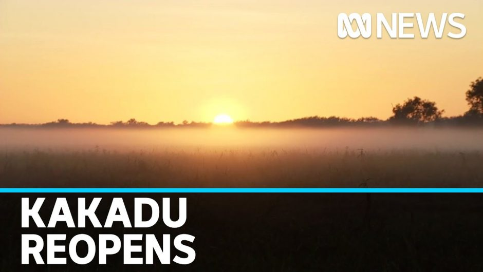 Kakadu National Park in the NT reopens to tourists as coronavirus restrictions ease | ABC News