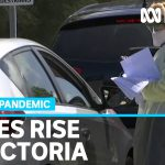 Victoria records 18 new coronavirus cases, including third Black Lives Matter protester   ABC News