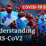 Researching coronavirus: What are the findings? | COVID-19 Special