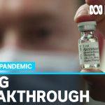 British scientists find breakthrough drug treatment in fight against coronavirus | ABC News