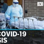 More than 500,000 people in the US infected with COVID-19 | ABC News