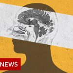 How our brains are processing the pandemic – BBC News