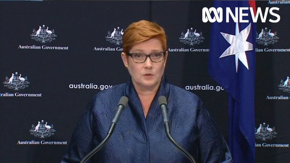 Coronavirus: Marise Payne announces rescue flights for Australians stranded overseas | ABC News