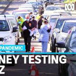 Huge queues outside Sydney coronavirus testing clinic after Woolworths scare | ABC News