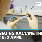 CSIRO begins trial on two potential COVID-19 vaccines: Coronavirus update 2 April | ABC News