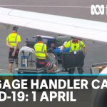 Coronavirus: Australia's death toll climbs, new cases linked to airport baggage handlers | ABC News