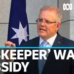 PM announces unprecedented wage subsidy for businesses affected by COVID-19 slowdown | ABC News