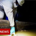 Coronavirus: Tracking new outbreaks in the sewers – BBC News