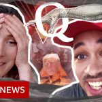 QAnon, coronavirus and the conspiracy cult – BBC News