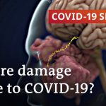 More long-term damage caused by COVID-19 than expected | COVID-19 Special