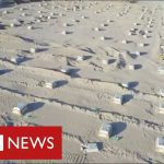 Iraq builds mass grave in the desert as coronavirus deaths surge – BBC News