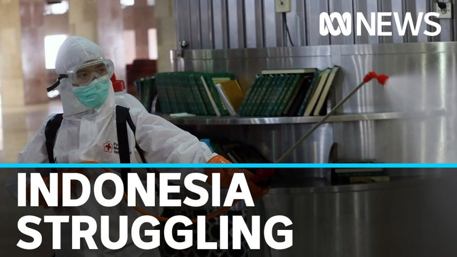 Indonesia struggles to contain coronavirus | ABC News