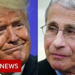 Coronavirus: White House targets US disease chief Dr Anthony Fauci – BBC News