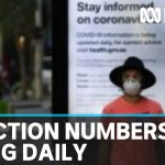 Australian epidemiologist: Coronavirus infection rates are rising by about 20% per day | ABC News