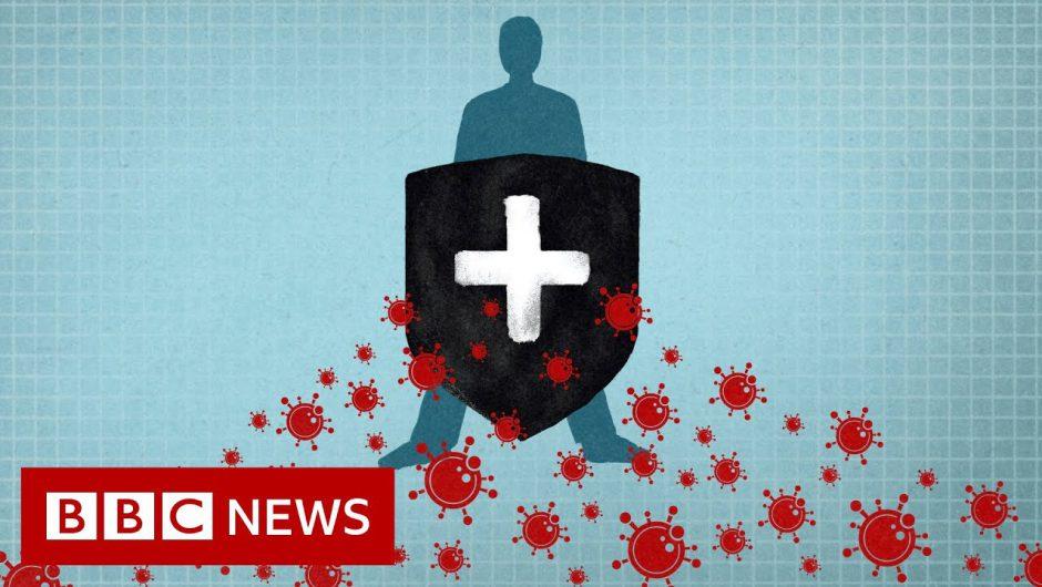 Coronavirus: Immunity explained – BBC News