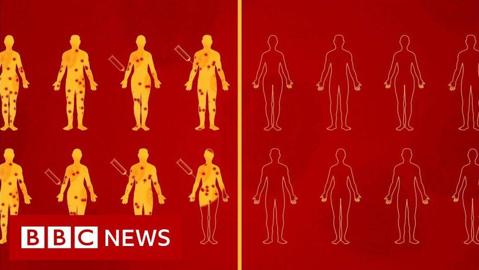 Coronavirus vaccine: What are human challenge trials? – BBC News