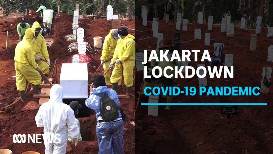 Indonesian capital heads into second lockdown as COVID-19 cases surge | ABC News