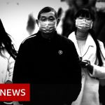 Coronavirus: Chinese city to shut public transport – BBC News