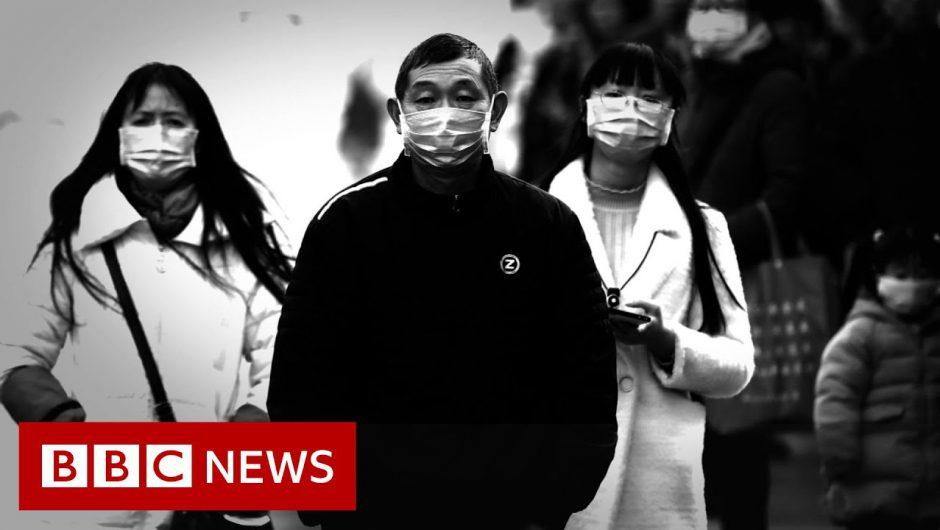 Coronavirus: Chinese city to shut public transport – BBC News