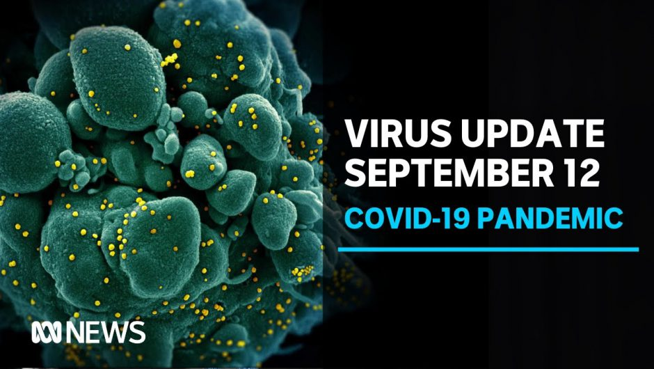 Coronavirus update September 12: 37 new COVID-19 infections in Victoria, six in NSW | ABC News