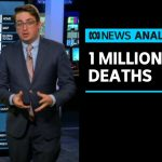ABC analyst Casey Briggs examines the data behind 1 million global coronavirus deaths | ABC News
